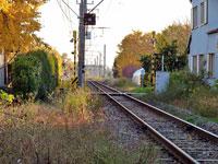 線路とイチョウの風景