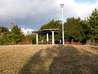 公園の芝生と緑の木々と屋根つきのベンチ