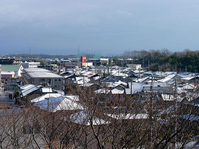 冬の枯れ木と雪が降った町並みの風景の拡大写真