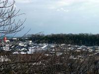 枯れ木群と雪の町の景色