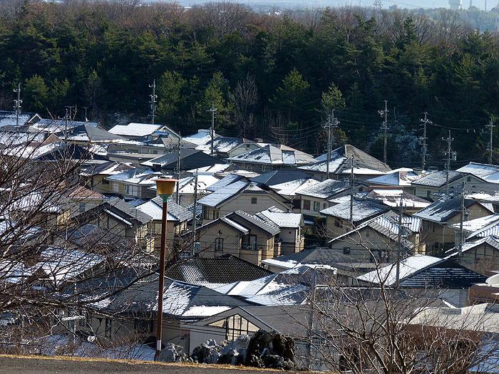 雪で白くなった町と枯れ木の冬景色の拡大写真