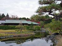 池と建物と松の木の風景
