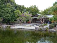 建物と池と植物の景色