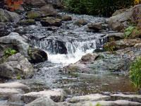 自然の滝と川と岩