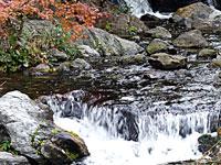 綺麗な自然の滝と紅葉