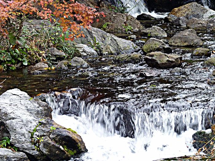 綺麗な自然の滝と紅葉の拡大写真