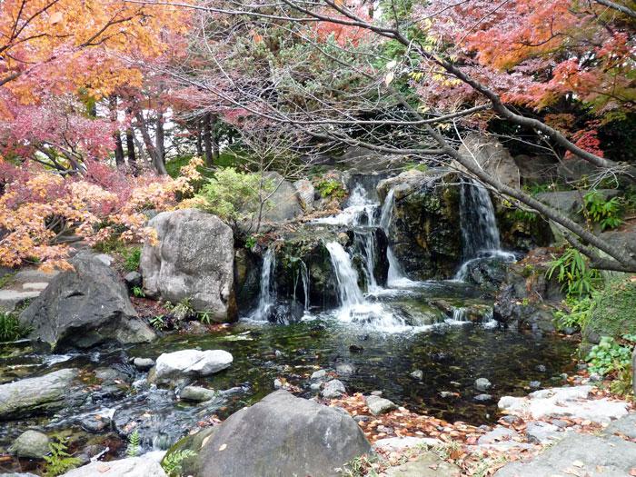 自然の滝と紅葉の風景の拡大写真