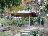 休憩する建物と自然(植物)いっぱいな景色