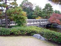 木の橋と小川とたくさんの植物の風景
