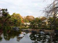 きれいな池と色とりどりの植物