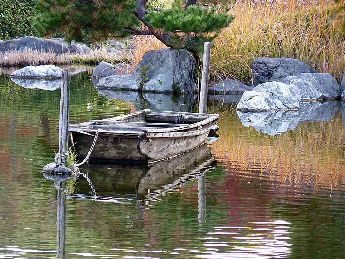 池と木の船の拡大写真