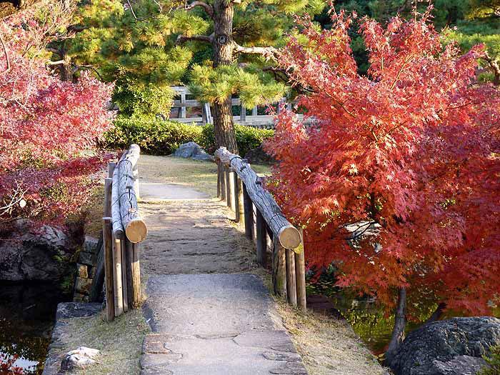 綺麗な木の橋と秋の紅葉の拡大写真