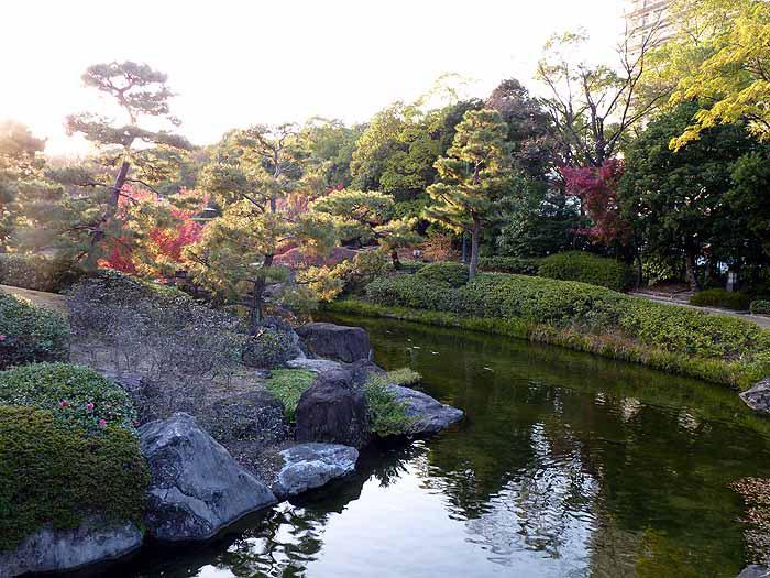 松の木と川と色とりどりの植物の風景の拡大写真
