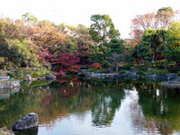 池と色とりどりの植物の風景