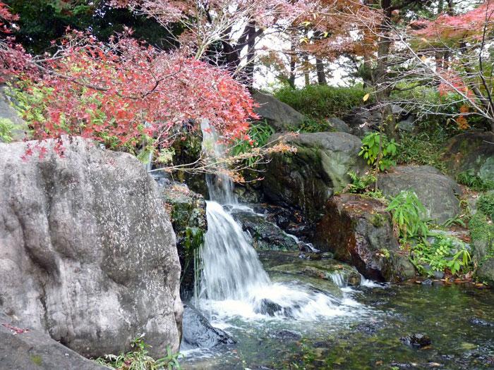 いろとりどりのモミジの葉自然な滝と紅葉の拡大写真
