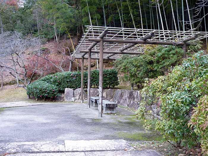 木の建物とベンチと緑の植物の拡大写真