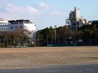 野球場とバックネットと建物