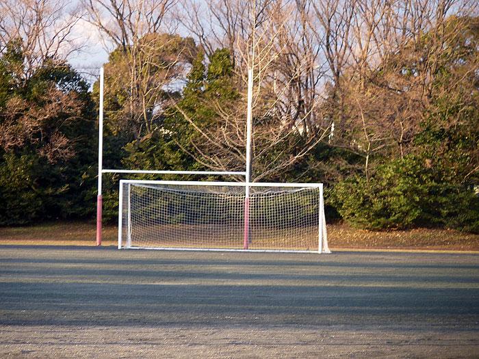 サッカー場とゴールネットと冬の植物たちの拡大写真