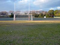 芝生とラグビーポールとサッカーのゴールネット