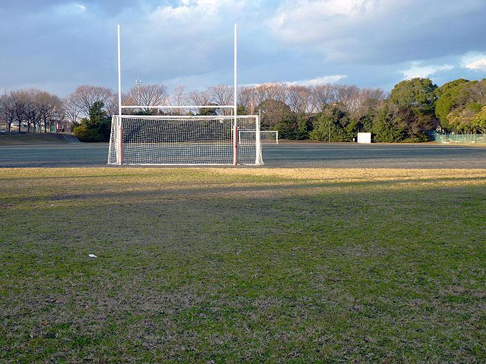 芝生とラグビーポールとサッカーのゴールネットの拡大写真