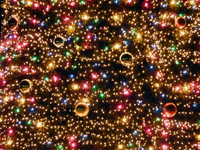 宝石のように綺麗なイルミネーションのクリスマスツリーその2の拡大写真