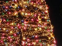 宝石のように綺麗なイルミネーションのクリスマスツリーその3