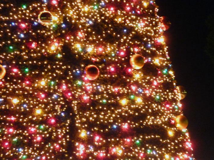 宝石のように綺麗なイルミネーションのクリスマスツリーその3の拡大写真